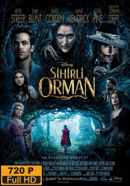 Sihirli Orman – Into the Woods (2014)